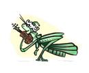 grashopper-2