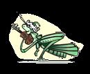 grashopper-trans-1